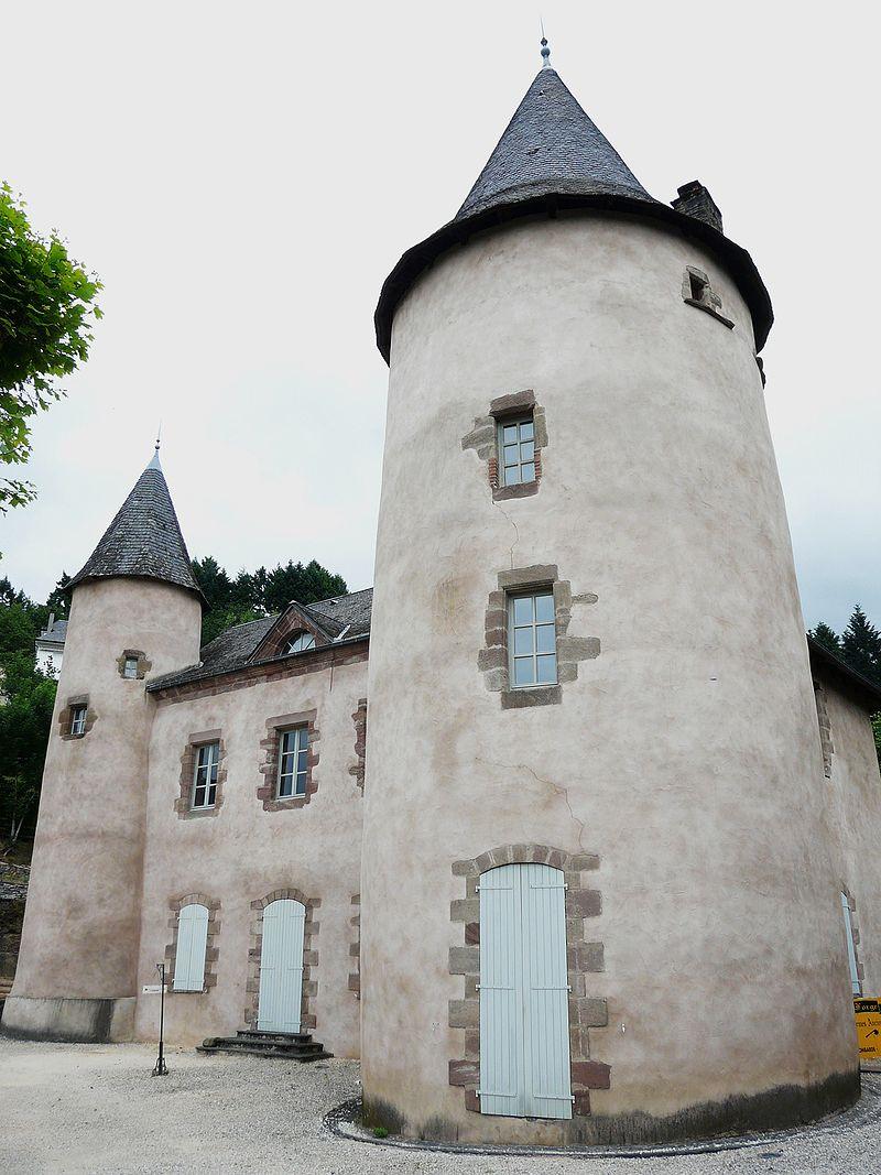 Allassac manoir des Tours (6).JPG