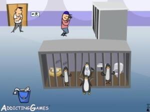 Milton the penguin - Zoo escape