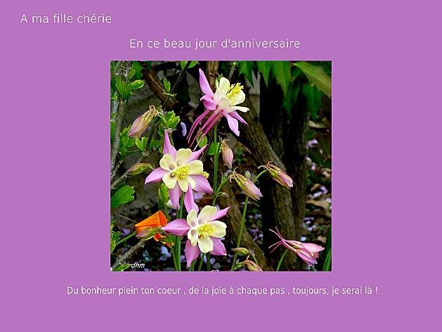 2010-05-02--fleurs-diverses.jpg