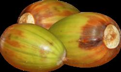 Fruit automne