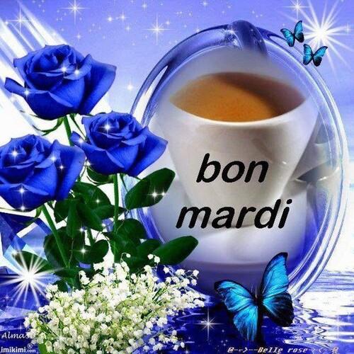 Bon mardi à tous