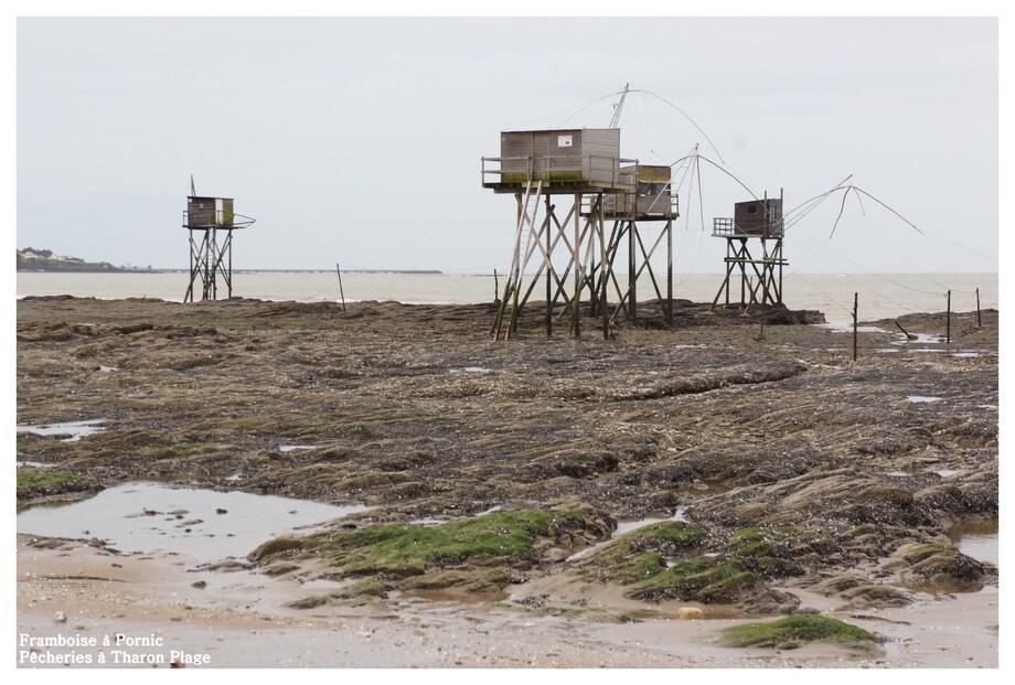 Pêcheries à Tharon Plage