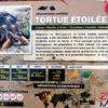 Tortue Etoilée - Panneau