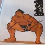 Musée Edo-Tokyo et Repas de Sumo (4)