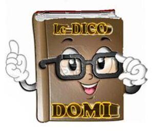"""LE  """"DICODOMI"""""""