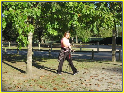 Bilan des activités pedestres d'octobre