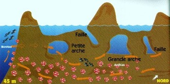 Les iles de l'archipel de Riou, l'île Maïre
