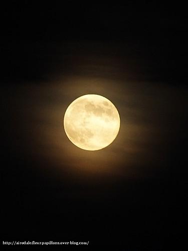 Pleine-lune-3juillet-2012--Merlin.jpg