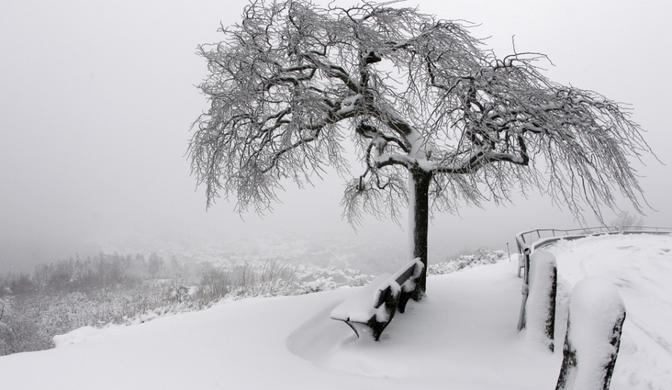 Nuit de neige (Maupassant)