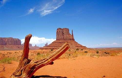 Le désert des Mojaves