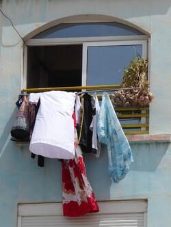 Les fenêtres d Alger