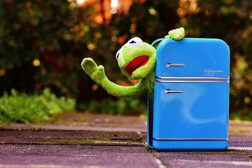 Kermit, Grenouille, Réfrigérateur, Drôle