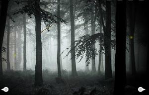 Jouer à Mysterious foggy forest