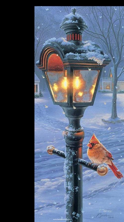 tubes noel / lampadaires, boites aux lettres