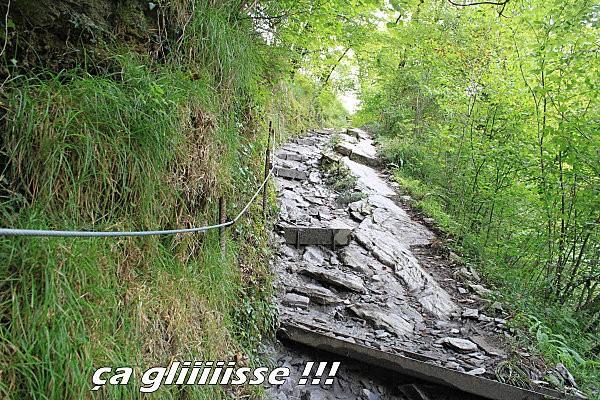 sentier d'Holzarte -13-