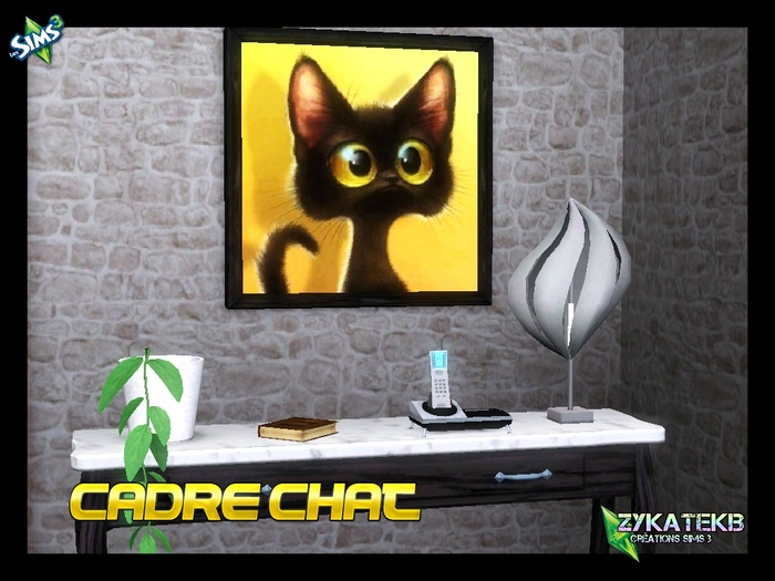 Cadre Chat