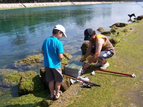 Pêche au canal de Capbreton