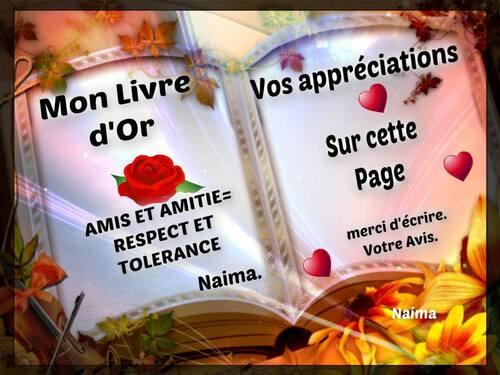 Mon livre d'Or de ma page AMIS ET AMITIE=RESPECT ET TOLERANCE.