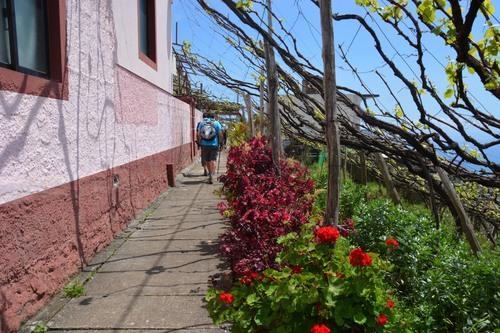 Randonnées dans l'Ile aux fleurs - Madère - avril 2018