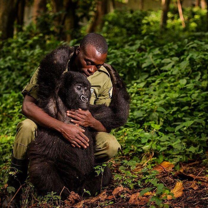 National Geographic : les plus belles photos du concours Instagram