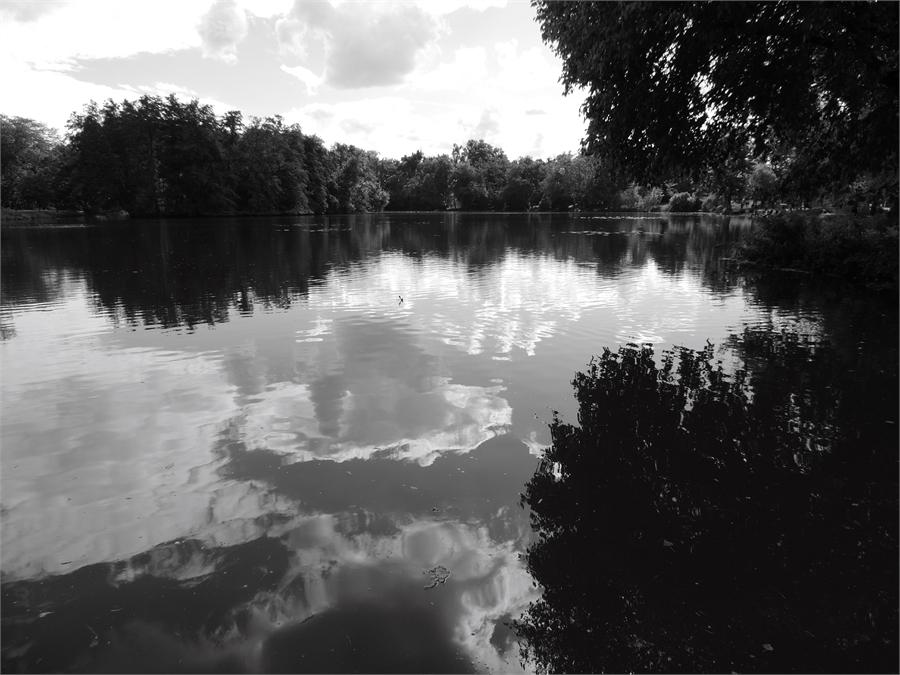 Le parc Majolan à Blanquefort 33 (6)
