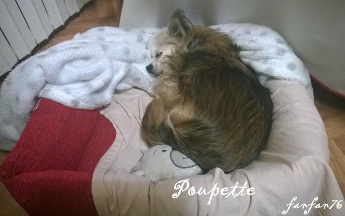 Petite Poupette