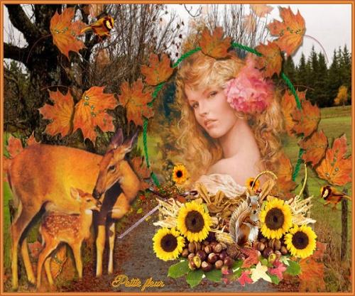 La route de l'automne
