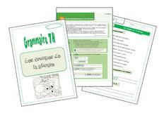 Grammaire 7H
