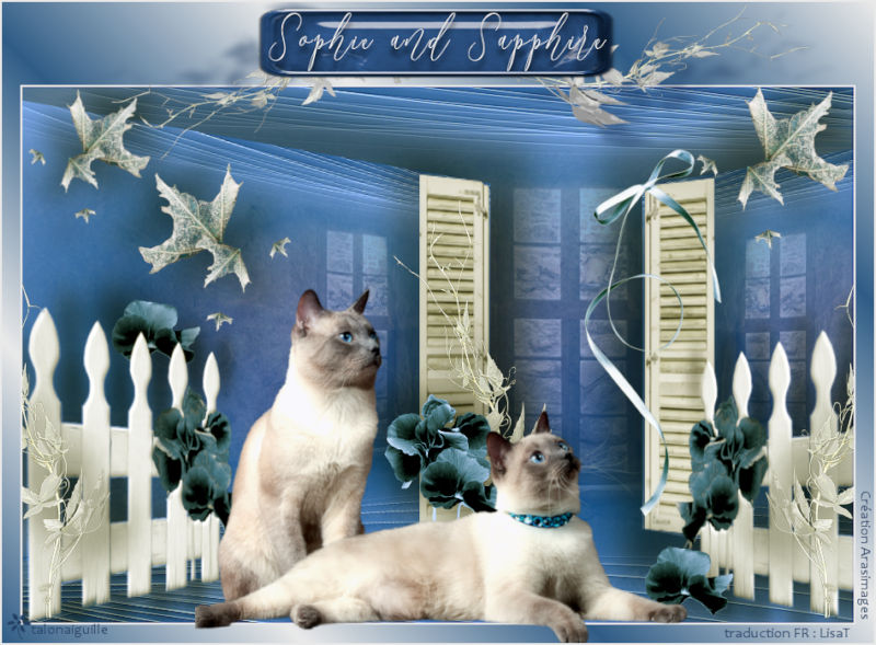 *** Sophie and Sapphire ***