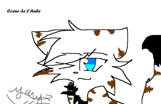 Voici Coeur de l'Aube une chatte que j'ai inventée