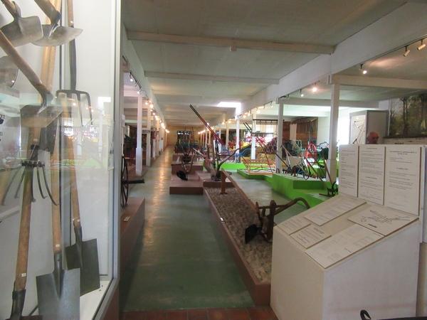 Les adhérents de la Société Mycologique du Châtillonnais ont visité l'Eco-Musée de la Forêt d'Orient dans l'Aube.