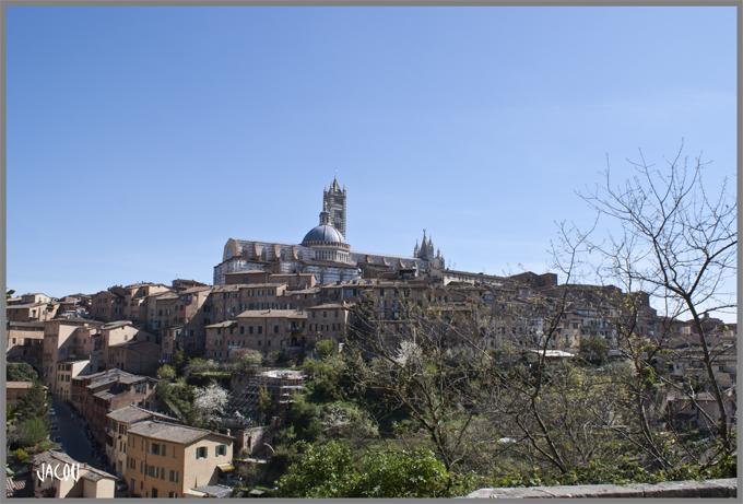 - Sienne l'autre perle de Toscane