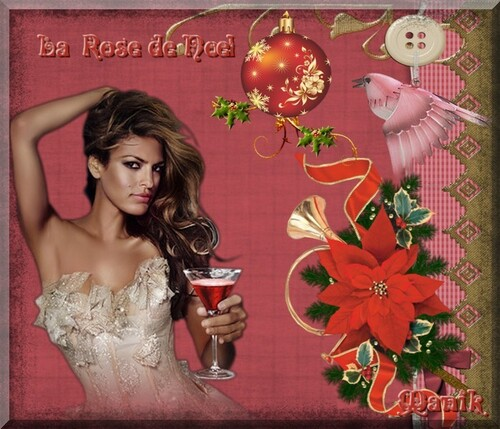 Les plus jolies roses de Noël