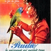 paulie-perroquet-a01