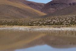 Geysers del Tatio - Goodbye Atacama !