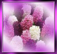 Virág PNG-be.