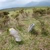 Ancienne borne/stèle dressée (605 m)