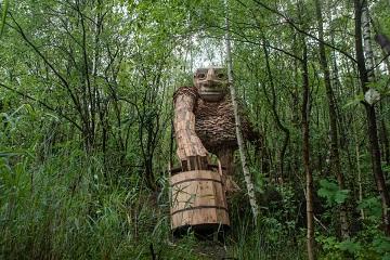Les géants de la forêt ...