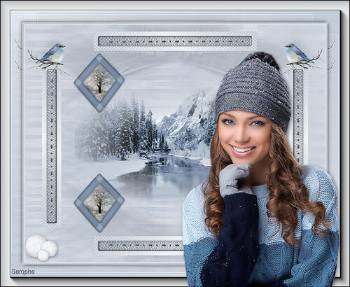 *** L'hiver ***