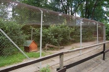 Zoo Saarbrücken 2012 105