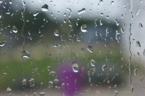 Ame graphique # pluie