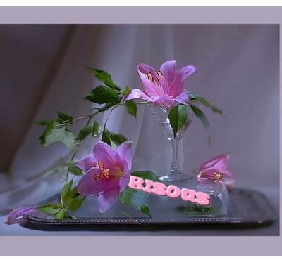 ♥ L'alise pacaude ♥