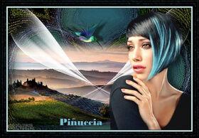 * Pinuccia *