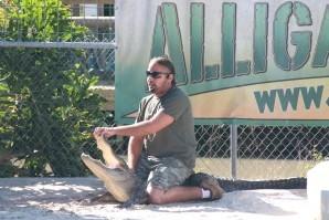 Everglades 2390