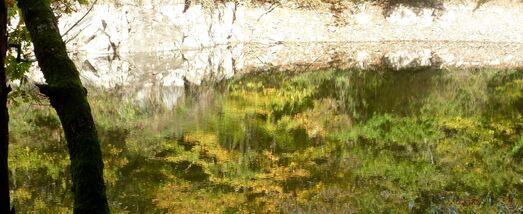 les derniers hectomètres - bord du lac Mervent