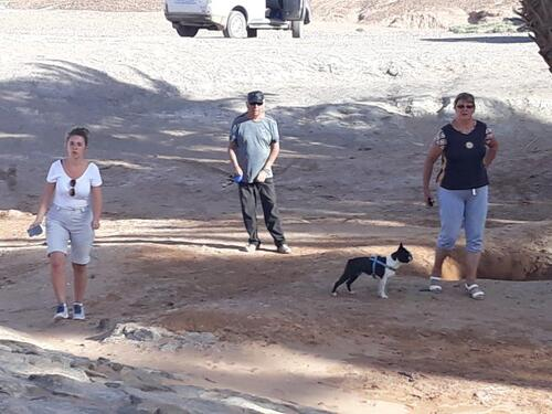 Trois touristes et un chien....