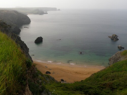 Belle-Île sud-est (suite)