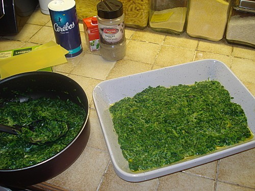 Lasagnes Saumon Epinards 2