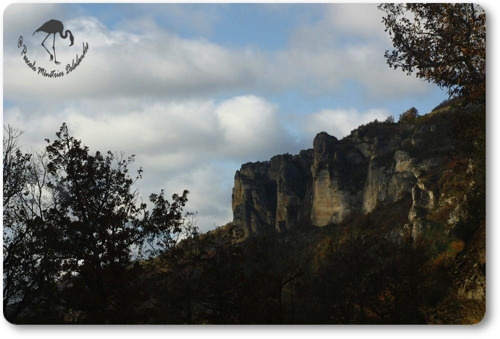 Les Gorges de la Jonte (Lozère)...