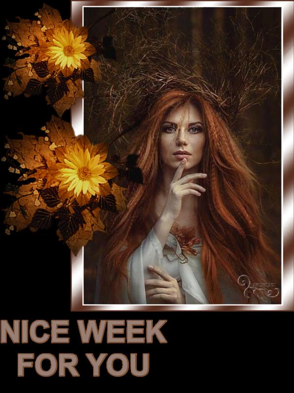 Boa Semana - 21 - Week - 21